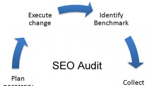 SEO Audit cycle half
